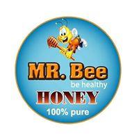 Mr. Bee