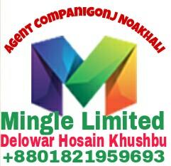 Mingle Limited